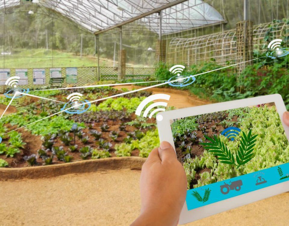 گلخانه های هوشمند